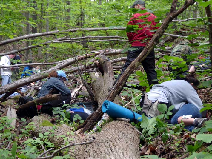 Giving care a mass casualty of patients trapped beneath a massive fallen tree